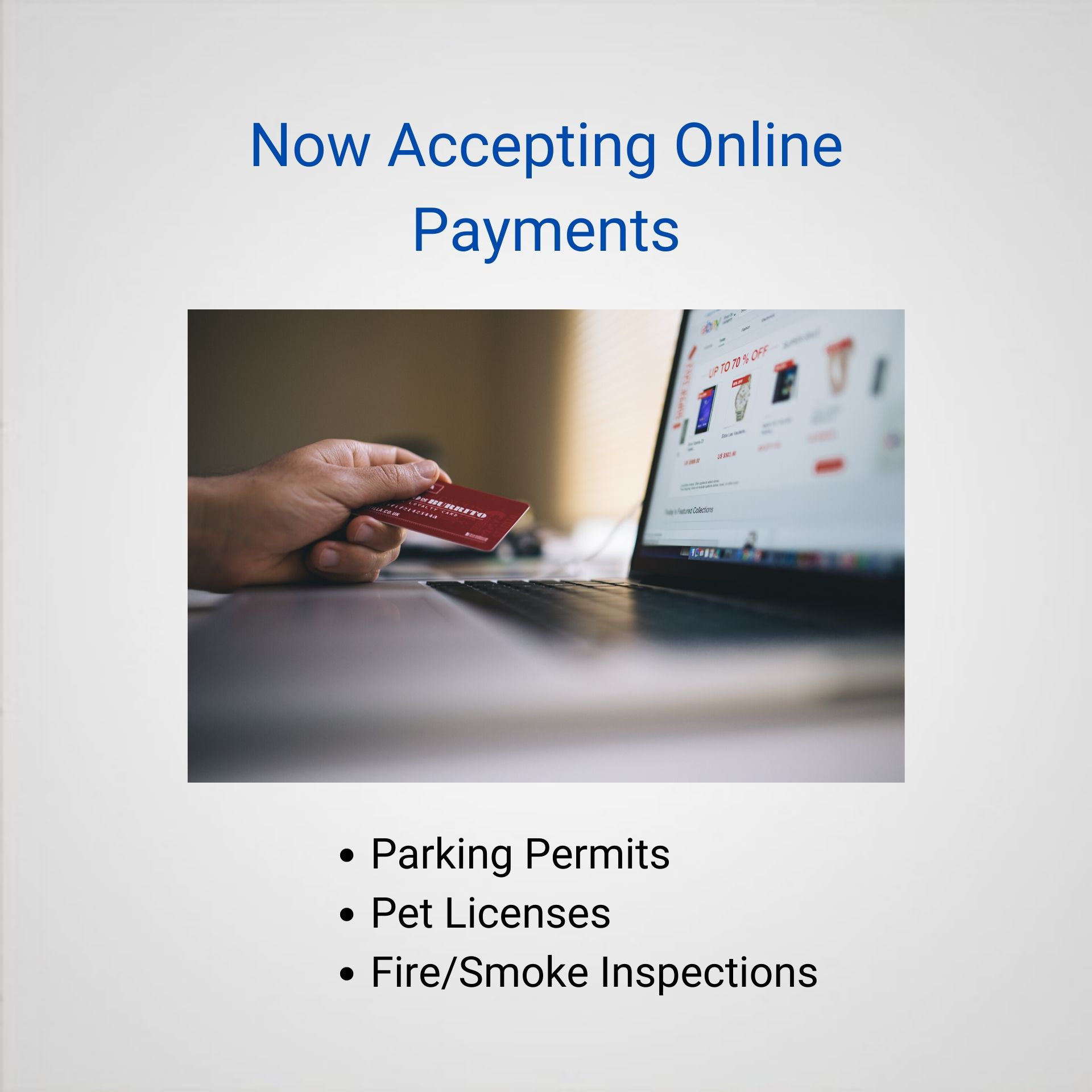 Online Payments (1)
