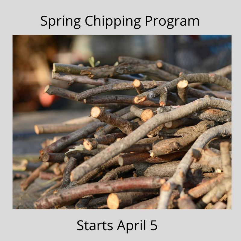 Spring Chipping