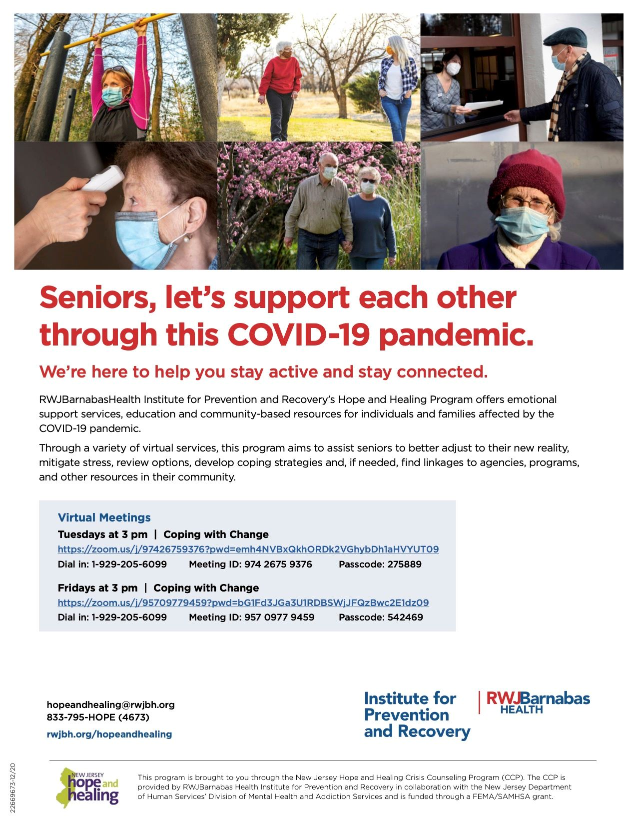FLYER IFPR Hope and Healing Seniors